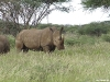 namibia-allgemein029
