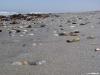 namibia-kueste023